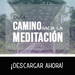 GUIA camino hacia la meditacion